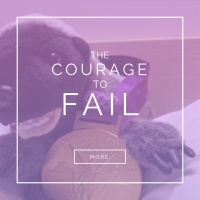 The Courage to Fail